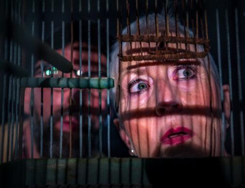 Theater Ineziatief – Rjocht yn 't hert – Freed 11 maart 2022